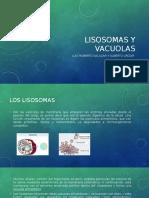 Lisosomas y vacuolas.pptx