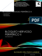 Bloqueo Nervioso Periférico II
