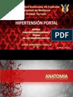 hipertensinportal-111128000844-phpapp01