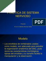 Practica de Sistema Nervioso2016