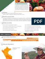 Ficha Comercial Hongo