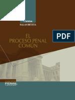 14 El Proceso Penal Comun