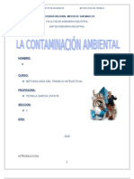 La Contaminacion 2009 INDICE[1]