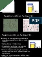 Analisis Del Sedimento Urinario (1)