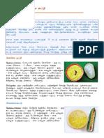 Tamil Samayal - Tasty Kootu (Poriyal) 30 Varities