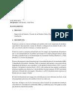 Avance Proyecto.pdf