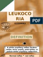 Leukocoria 2016fix