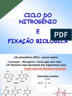 ciclo-n-e-fbn