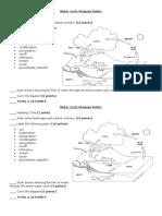 water cycle diagram rubric