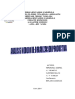 Analisis Modulo III Organizacion Productiva