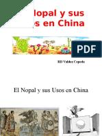 China Nopal.ppt