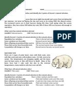 darwins natural selection worksheet key