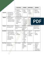 Cuadro de Exámen Fisico Respiratorio - Principales Sindromes