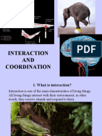 Interaction and Coordination (2nd ESO)