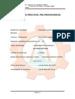 Informe de Prácticas Pre Profesionales 2