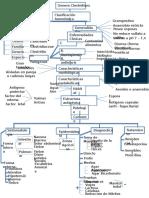 Mapa Conceptual Clostridium