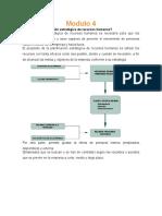 Planeacion de Recursos Humanos (Para Reactivos CENEVAL)