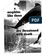 how to save 2 dolphins article