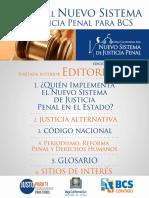 Revista Digital NSJP BCS