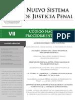 EDGPublicacionesRevista Reforma Penal7 Revista NSJP