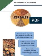 Cereales Tecnología de Alimentos