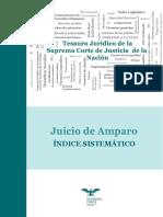 12. TJSCJN - JuicioAmparo