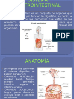 Presentaciones Sistema Gastrointestinal y Tomografia Comaputarizada