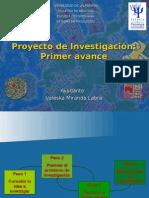 Proyecto de Investigacion