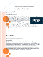 Botani Farmasi 3 (Anatomi)