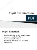 pupil new in ocular content like rapd