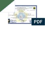 Cert Coat. Inspector.pdf