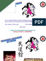 PRIMERAS LECCIONES DE LUCHA 1