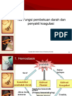 Koagulan Disorders