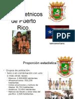 Grupos Etnicos de Puerto Rico.
