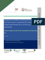 Diagnostico de Deforestacion Chihuahua