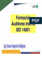 Auditoria 14001