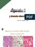 Pigmentos histoquimica