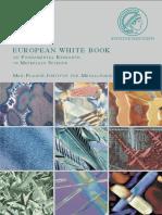 libro_bianco_materials Max Planck.pdf