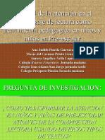 PRESENTACION PFPD 2009- 2010