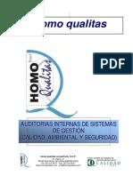 4.Ft Auditorias Internas r02