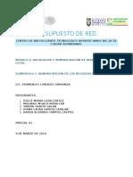 PROYECTO DE RED PRESUPUESTO