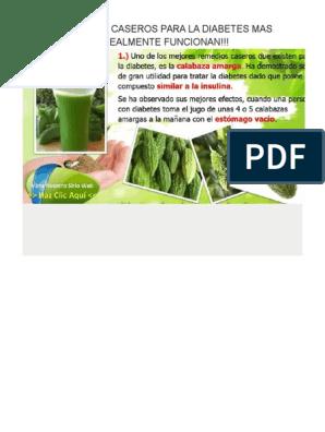 remedios caseros para la diabetes pdf