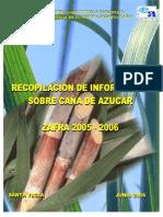 documento cana de azucar 2005-2006.pdf
