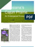 Lousiana's Cajun Prairie