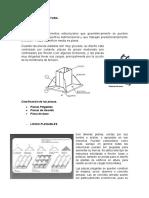 Sistema de Estructura - placas