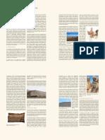 005 1000 1400dc Diversidad en La Prehistoria Chilena