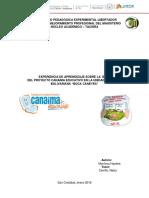 Planificación Microclase Haydee