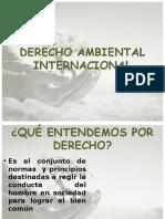 DERECHO_AMBIENTAL_INTERNACIONAL_avanzado[1].ppt