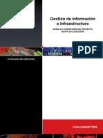 Gestion de La ion e Infraestructura