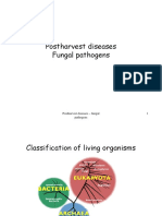 Fungal Pathogens